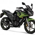 2011 Yamaha Fazer - CYBER Green