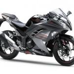 2013 Kawasaki Ninja 300R - 003