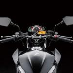 2013 Kawasaki Z250 StreetFighter - 007