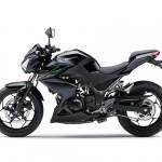 2013 Kawasaki Z250 StreetFighter - 004