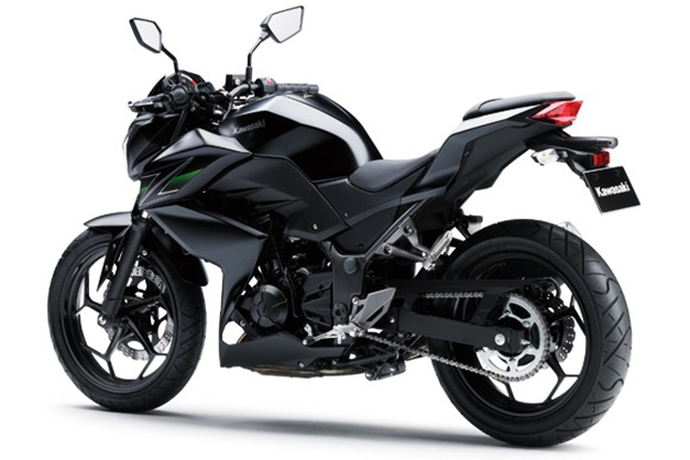 2013 Kawasaki Z250 StreetFighter - RearView