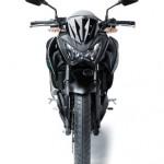 2013 Kawasaki Z250 StreetFighter - 001