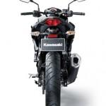 2013 Kawasaki Z250 StreetFighter - 002