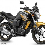 2013 Yamaha FZ-S - Glory Gold