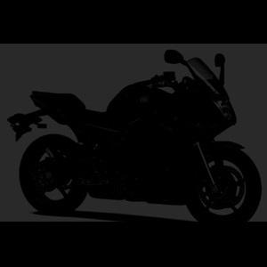 2013-Yamaha-YZF-R250-India