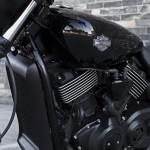 2014-Harley-Davidson-Street750-India-004
