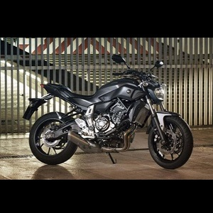 2014-yamaha-mt_07-india