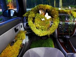 car-dashboard-made-grass