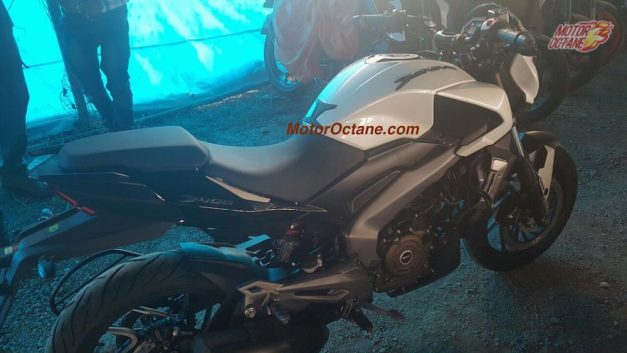 bajaj-dominar-400rear-back-pictures-photos-images-snaps