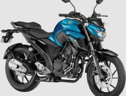 yamaha-fz25-250cc-launched-details-pictures-price