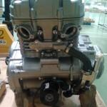 Suzuki GW250 - 002