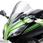 2013 Kawasaki Ninja 250R - 003