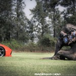 Lamborghini Aventador with an Elephant - 005