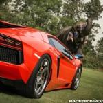 Lamborghini Aventador with an Elephant - 004