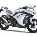 2013 Kawasaki Ninja 300R - 005