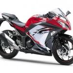 2013 Kawasaki Ninja 300R - 001