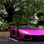 Matte Pink Lamborghini Aventador LP760-2 - 005