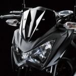 2013 Kawasaki Z250 StreetFighter - 005