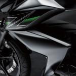 2013 Kawasaki Z250 StreetFighter - 006