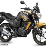 2013 Yamaha FZ-S - Glory Gold
