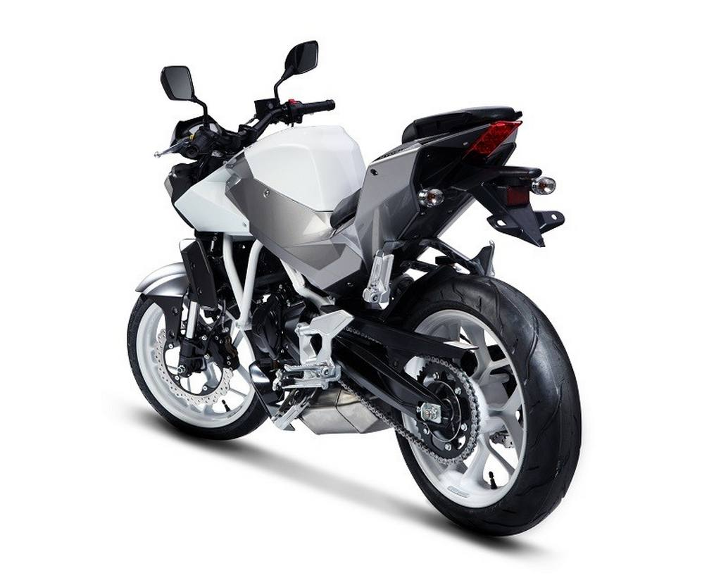 DSK Hyosung Aquila 250 Limited Edition Launched at Rs 2.94