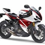 Yamaha_R3_300cc_motorcycle_india