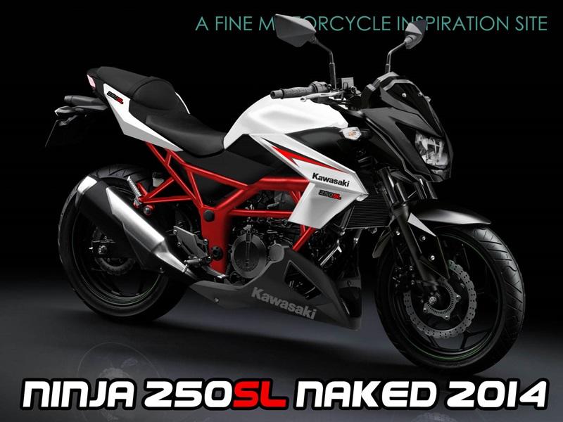 Kawasaki Ninja Vs Ninja Sl