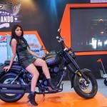 2014-auto-expo-the-babe-girl-001