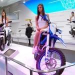 2014-auto-expo-the-babe-girl-053