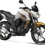 2014 New Yamaha FZ-S - Hawk-Eye Gold