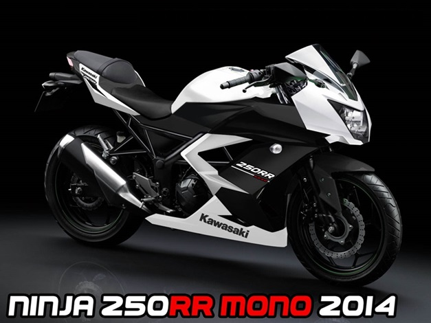 new-kawasaki-ninja-250rr-fullfairedbike-india