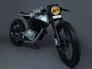 karizma-cafe-racer-silver-mean-green-customs