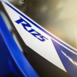 2014-Yamaha-YZF-R125-badge-India