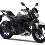 yamaha-mt-03-r3-street-fighter-silver-front
