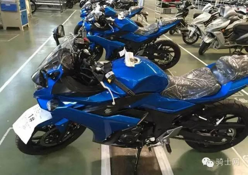 Suzuki Gixxer 250 Gsx R250 First Images From Japan