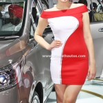 babes-queens-ladies-hot-pretty-anchor-girls-models-2016-auto-expo-pictures-photos-images-snaps-028