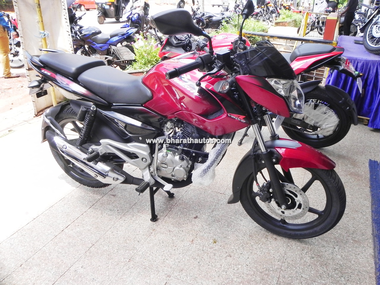 Bajaj pulsar 135 ls cocktail wine red paint shade front pictures photos images snaps