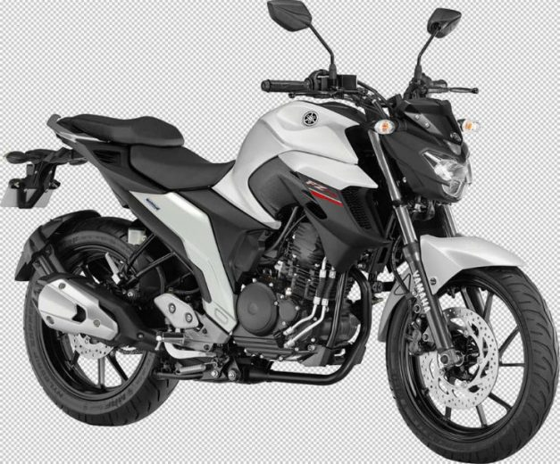 yamaha-fz-25-250cc-warrior-white-pictures-photos-images-snaps-video