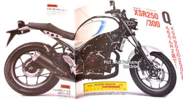 yamaha-xsr300-pictures-photos-images-snaps-video